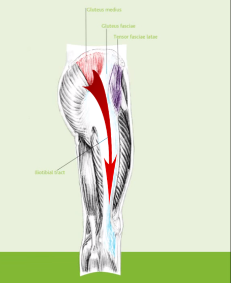 Lateral Sling 1.png