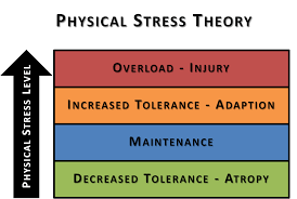 Physical Stress theory.png