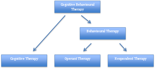Fig.2 - Breakdown of CBT theory