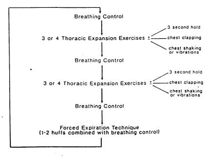 Active cycle of breathing technique - Physiopedia