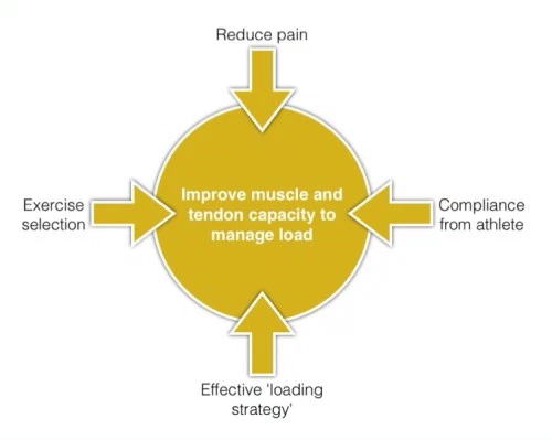 Management of tendinopathy.png