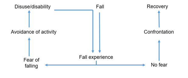 Fear avoidance model (Falls).PNG