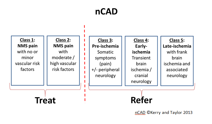 Figure 2: The Nottingham CAD (nCAD) classification