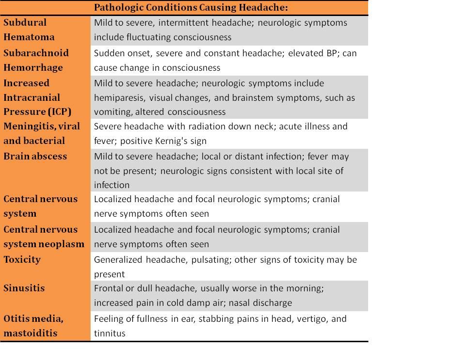 neurology and neurosurgery essay
