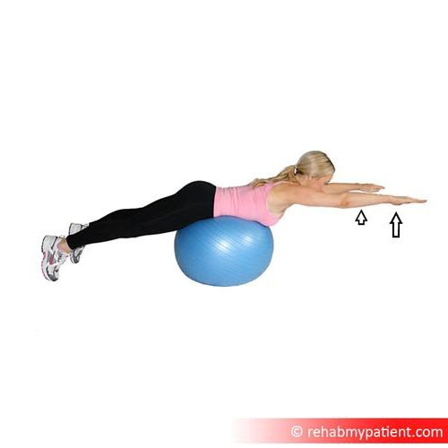 Back extensio on swiss ball.jpg