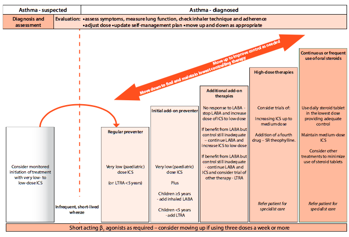 care and management of asthma Asthma self-management education for adults asthmaeducationmustbefocusedonself-management, involve a collaborative relationship between the provider.