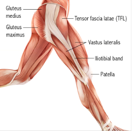 itb syndrome What is iliotibial band syndrome iliotibial band syndrome, usually referred to as it band syndrome, is a common cause of knee pain that occurs along the outside of the knee and the lower thigh.