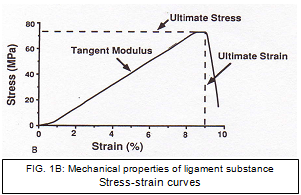 Stress-stain curves.PNG