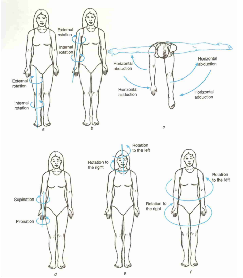 Cardinal Planes And Axes Of Movement Physiopedia