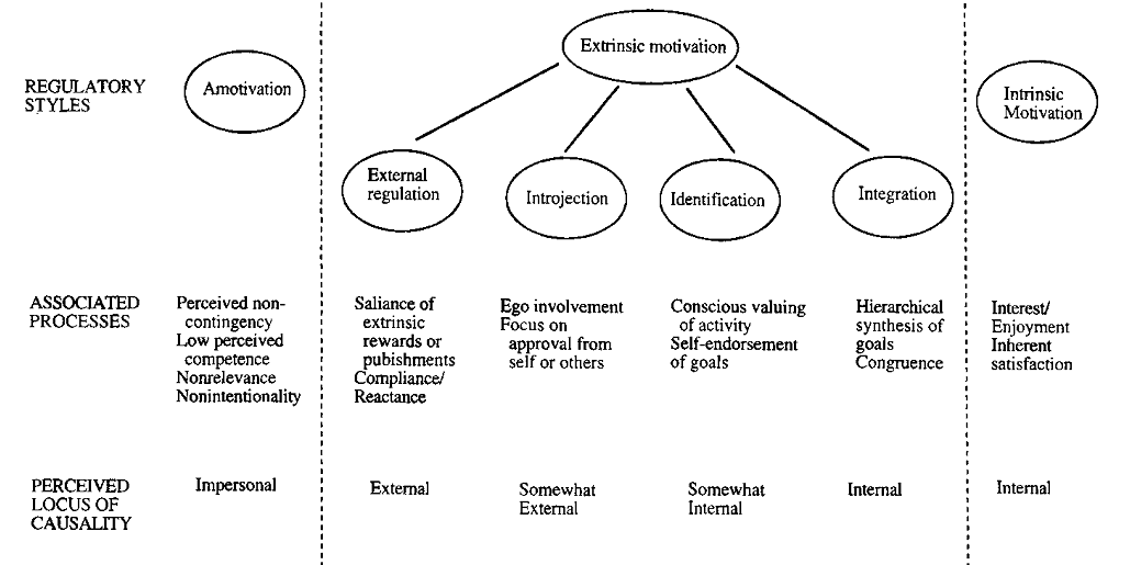 Taxonomy of human motivation. Ryan & Deci (2000)