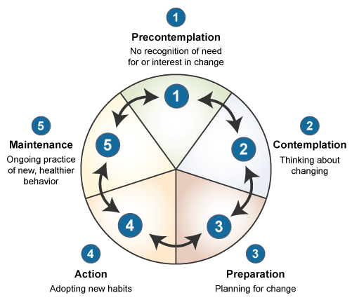 transtheoretical model The transtheoretical model of behavior change (ttm) is founded on stages of change, which categorize segments of populations based on where they are in the process of change.
