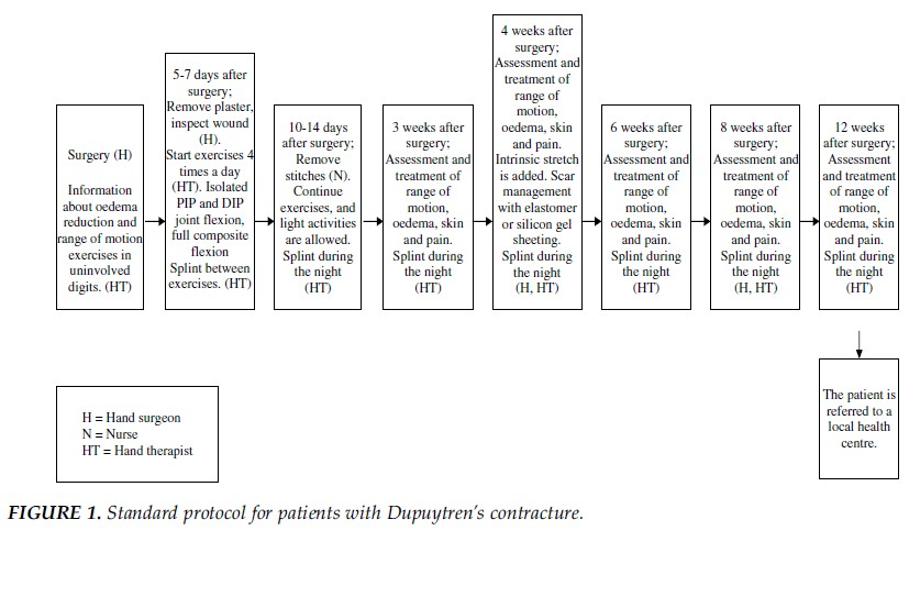 Image 5: Standard protocol for patients with Dupuytren contracture