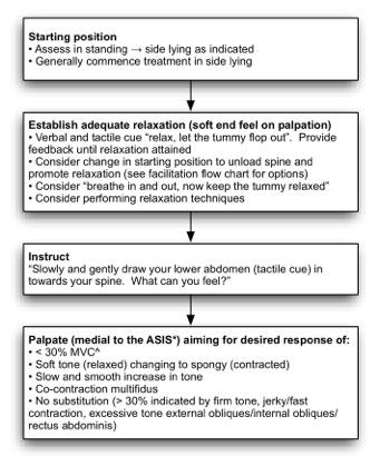 Lumbar Motor Control Training Physiopedia