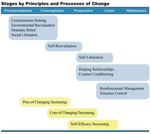 Stages by principles and processes of change.PNG