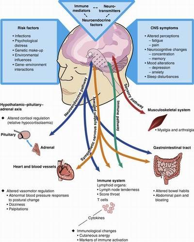 Nootropics Review - Best Smart Drug Brain Supplement Guide