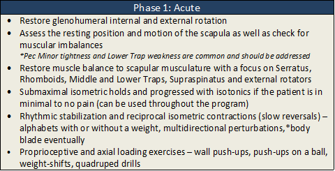 Shoulder acute phase rehab2.png