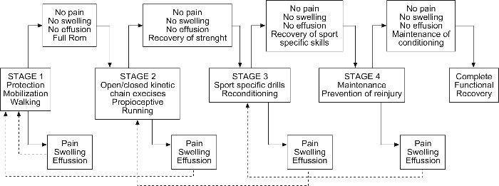 Rehabilitation in Sport - Physiopedia