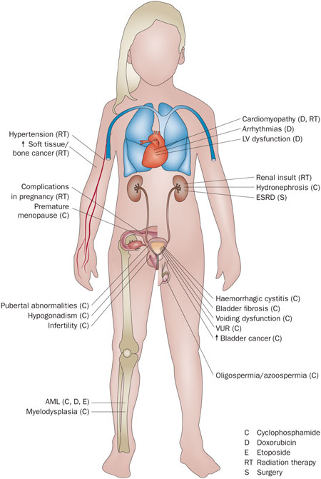 Wilms Tumor Systemic Effects.jpg