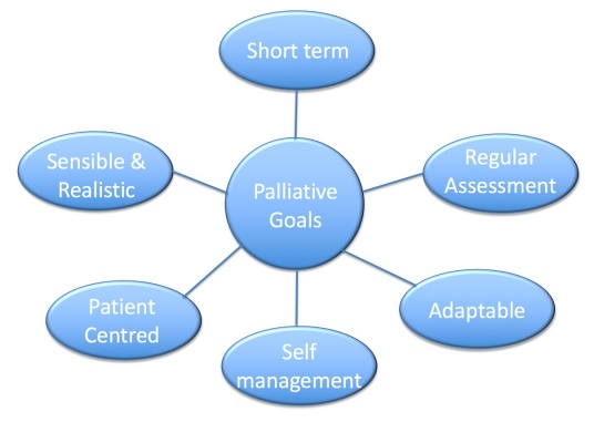 Palliative Goals Diagram.jpg