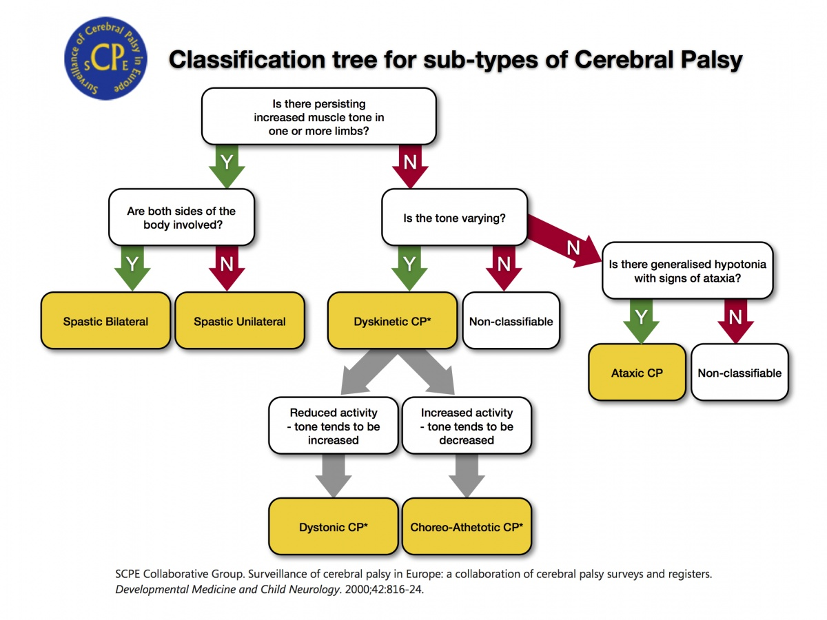 a study on the neurological developmental disorder cerebral palsy cp You have free access to this content interrater reliability study of cerebral palsy diagnosis, neurological subtype, and gross motor function.