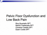 Low back pain and pelvic floor disorders physiopedia pelvic floor dysfunction and lbp pptg tyukafo