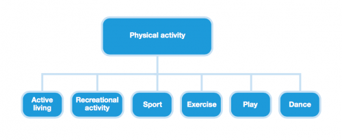 Various Types of Physical Activity (WHO 2016)