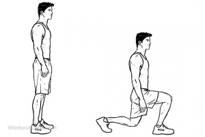 Fig. 12 : Lunges