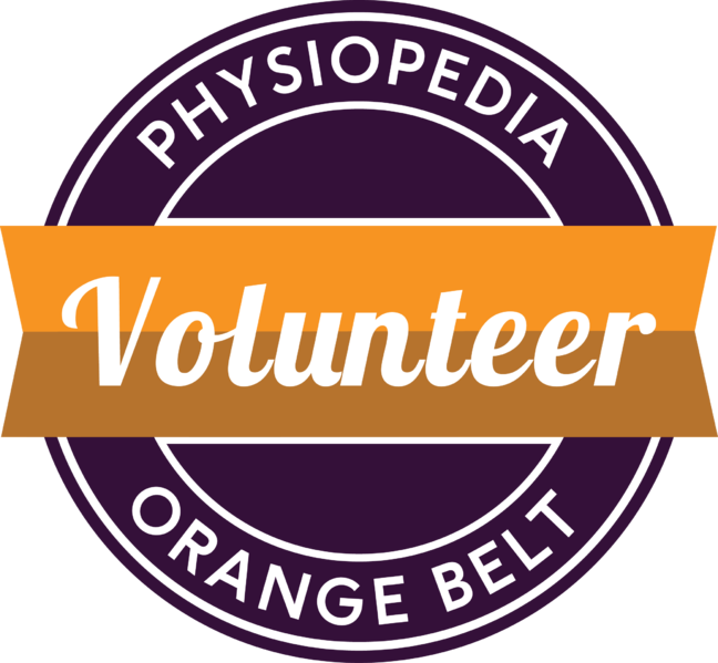 File:Orange-belt.png