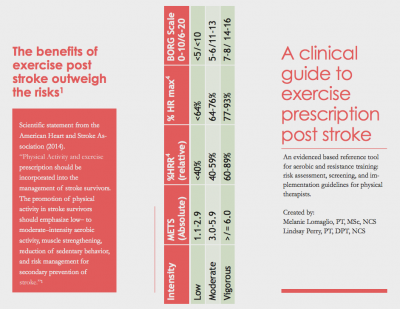 Clinical Guide to Exercise Prescription Post Stroke 1.png