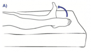 Plantar flexion and dorsiflexion of the feet.png