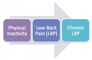 The main focus of our page is physical inactivity is the cause of low back pain