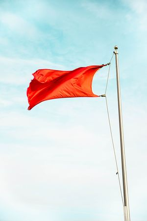 Red flag photo.jpg