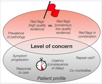Finucane L. Level of concern - an Introduction to red flags in serious pathology slide. Physioplus 2020.