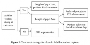 Fig. 5 : Treatment strategy for chronic Achilles tendon rupture