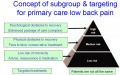 Concept of subgroup and targeting of lbp.jpg