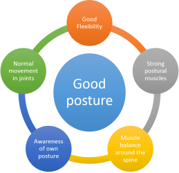 Components of Good Posture (Adapted from the Mayfield Clinic (2016))
