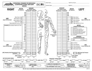 International Standards for Neurological Classification of Spinal ...