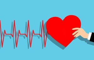 Image result for Letter: Stop the cycle of heart disease