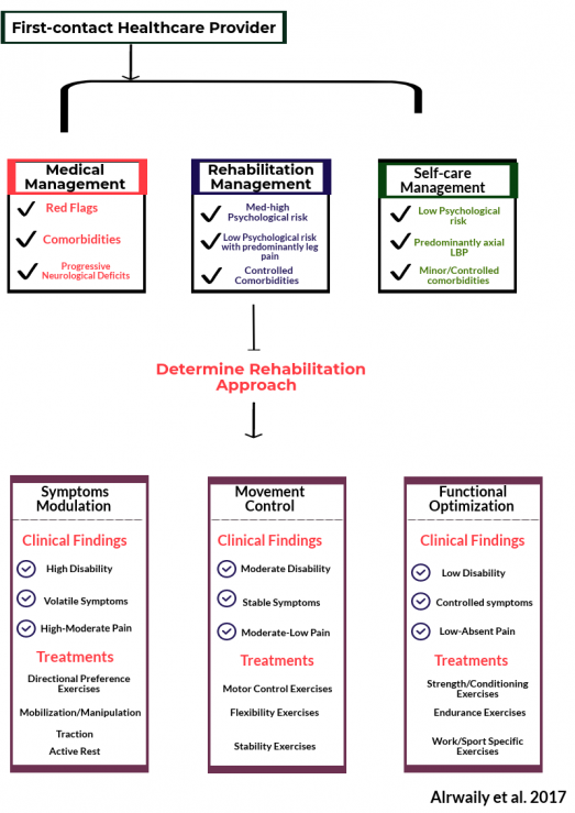 treatment based classification approach to low back pain