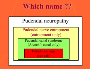Pudendal Neuralgia - Physiopedia