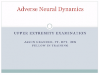 Adverse neural dynamics upper ex exam presentation title.png