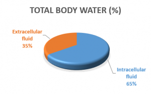 Total Body Water Percentage (Adapted from Benelam and Yness (2010))