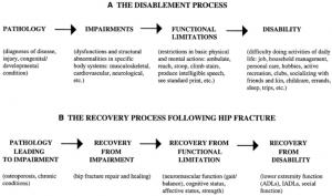 dynamic hip screw procedure manual