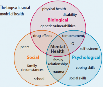 Biopsychosocial-model-of-health.PNG