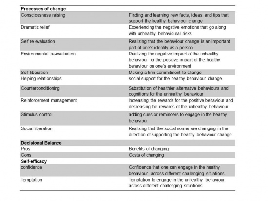 Transtheoretical model constructs taken from Glanz et al. 2008