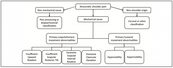 Classification Of Shoulder Pain Physiopedia