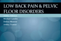 LBP and pelvic floor disorders ppt.PNG