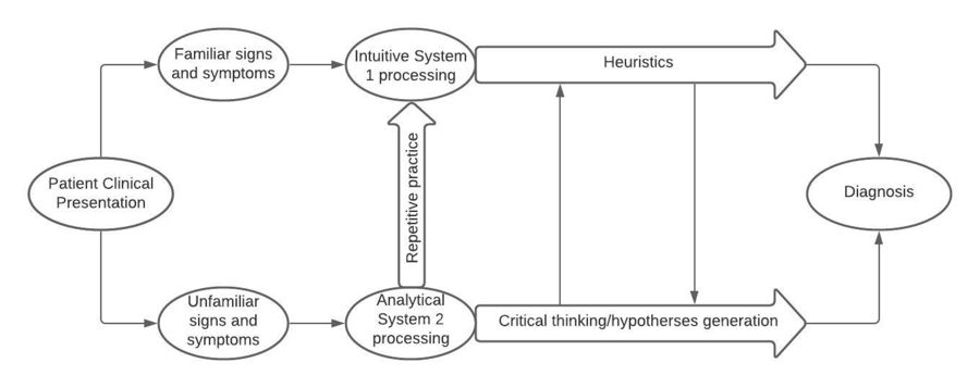 Clinical decision making model.jpeg