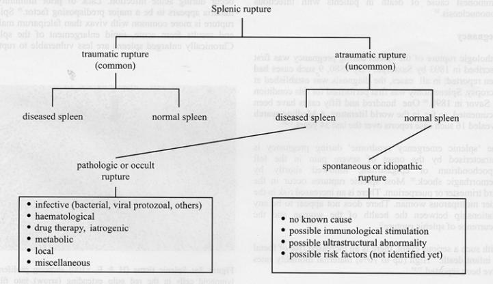 Ruptured Spleen - Physiopedia